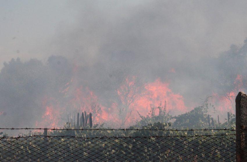 Сериозен риск от пожари в 13 области