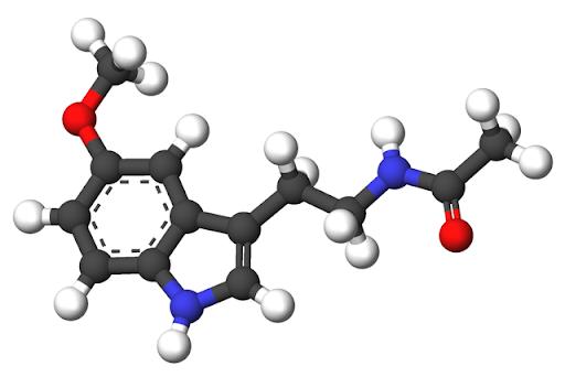Мелатонинът – хормонът на младостта