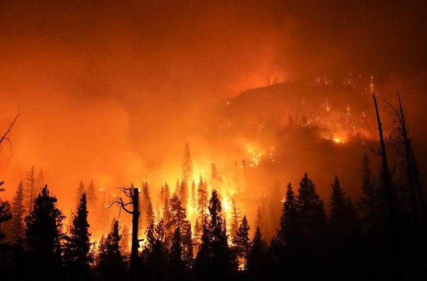 Димът от пожарите в САЩ стигна Европа
