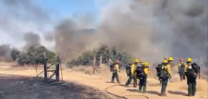 Локализиран от всички страни е големият горски пожар в Кирковско