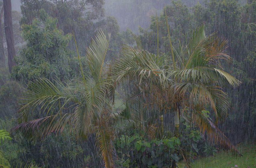 Тропическата буря Гама достигна бреговете на Мексико
