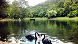 Сандански е номиниран за туристическа община на годината