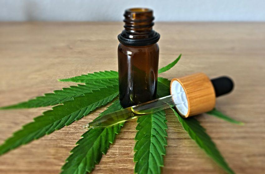 ООН извади марихуаната от списъка с опасни наркотици