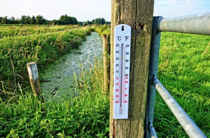 Топла събота! Термометърът удря почти 20 градуса!